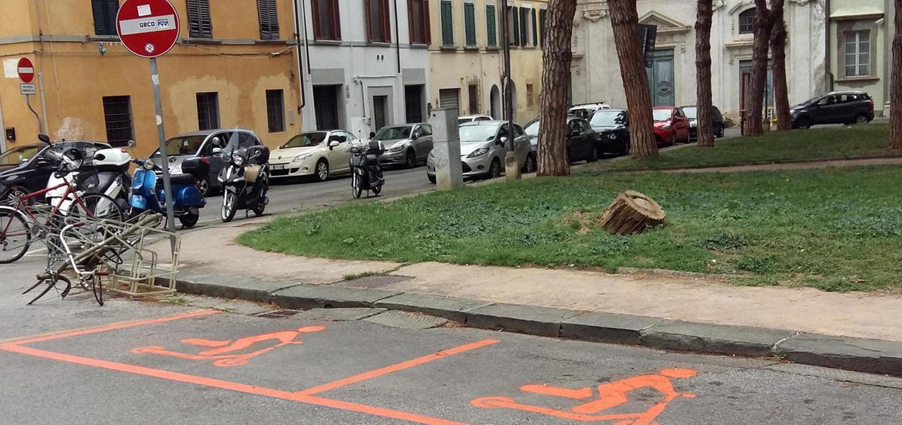 Stalli per monopattini a Pisa